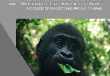 A new guide to sustainably manage wildlife in Central African production forests