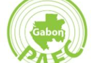 Press release of our partner  PAFC Gabon : The forest certification PACF GABON continues its development and commitment to the Gabonese forests. By Rose ONDO, President of PAFC GABON
