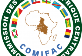 COMIFAC : Call for expressions of interest for the recruitment of an individual consultant – Expert in Forest Governance at the Executive Secretariat of the COMIFAC