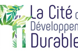 Web meeting of the Agroforestry group of the Cité du Développement Durable
