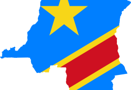 DRC: ADOPTION OF MEASURES TO COMBAT ILLEGAL ARTISANAL TIMBER