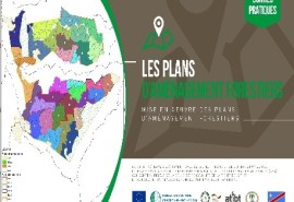 Implementation of FLEGT REDD CERTIFICATION project activities in the DRC