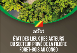 Update – Study Overview of the private sector in the Republic of Congo