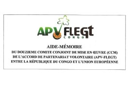 Review of the 12th Joint Implementation Committee of the FLEGT VPA in the Republic of Congo