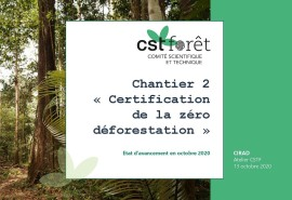 CST Forêt de l'AFD, point sur le chantier « Certification de la zéro déforestation