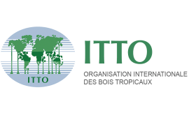 ITTO and the Convention on Biological Diversity renew their cooperation until 2025