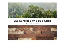 ATIBT's commissions at the heart of the actions for our association