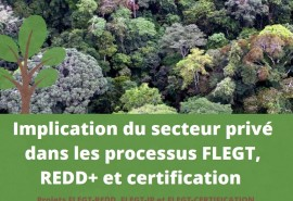 Finalization of the FLEGT REDD, FLEGT IP and FLEGT projects ATIBT certification