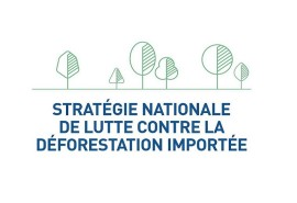 Launch of the platform for observation and fight against imported deforestation