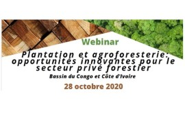 ATIBT Webinar october 28, 2020 : plantation and agroforestry: innovative opportunities for the private forestry sector - congo basin and côte d'ivoire