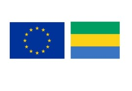 VPA FLEGT Gabon: UFIGA works for the resumption of vpa flegt negotiations between Gabon and the European Union