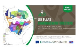 DRC : Awareness - rising shorts films among forest stakeholders are available