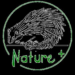 nature_transparent-1